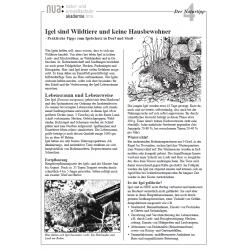 Infoblatt Nr. 04