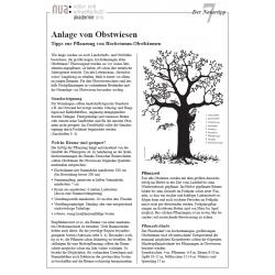 Infoblatt Nr. 07